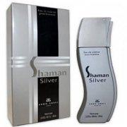Купить Arno Sorel туалетная вода мужская 100мл Shaman Silver Шаман Сильвер
