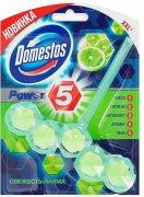 Купить Domestos Power 5 Блок для очищения унитаза 55г свежесть лайма