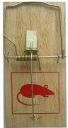 Купить Rat&Mouse Мышеловка деревянная